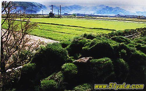 門頭溝龍門澗風景區 北京云峰山自然風景區