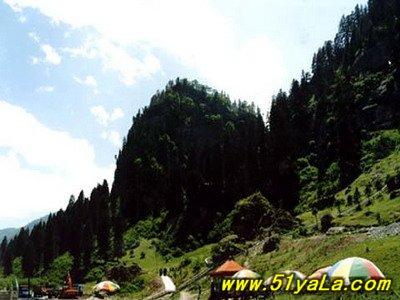 松鸣岩国家森林公园,位于临夏州和政县南25公里处的太子山林区.